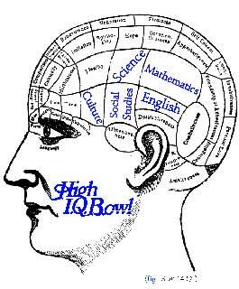 The IQ Brain View