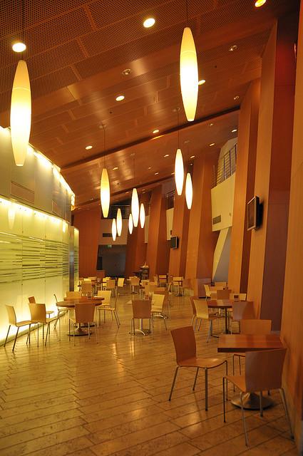 Walt Disney Concert Hall, Los Angeles, CA, USA - Interior 4