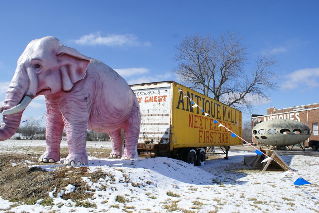 Futuro & Pink Elephant