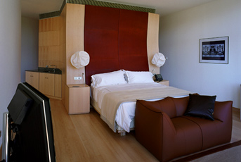 Hotel Marques de Riscal Gehry Suite 1