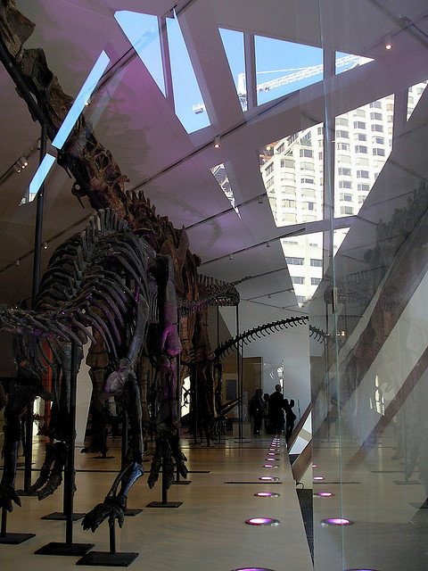 Royal Ontario Museum, Toronto, Canada - Interior 5